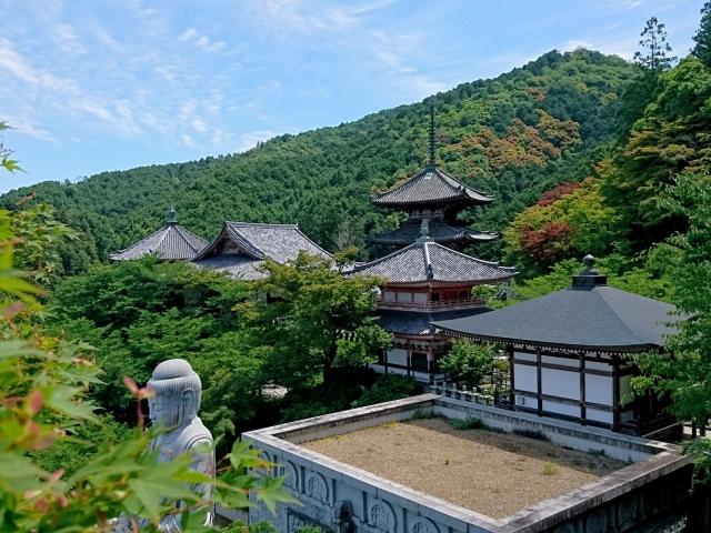 日本のお寺が中国人観光客に人気!そのワケとは